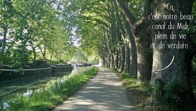 La Fondation Crédit Agricole Toulouse 31 soutient le Canal du Midi pour la 3ème année consécutive