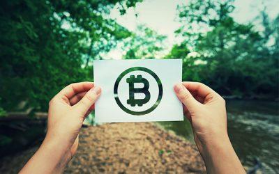 La blockchain au service de la traçabilité alimentaire