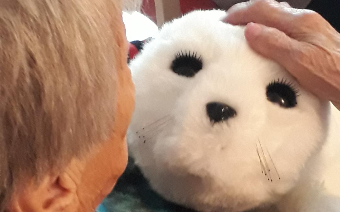 Un robot bébé phoque aux vertus apaisantes à la résidence Edenis le Pin