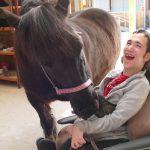 Appel aux dons pour la tractothérapie de la Fondation Marie-Louise