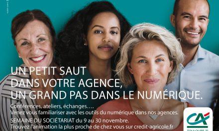 Ateliers d'inclusion numérique du 9 au 30 novembre 2019