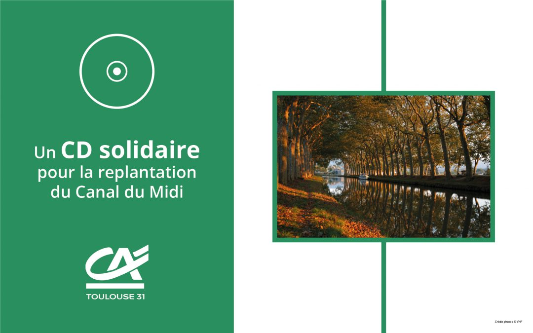 Un CD solidaire pour la replantation du Canal du Midi