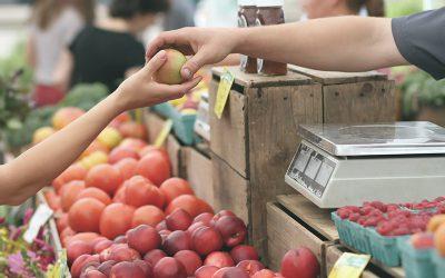 Qu'est-ce qu'un produit alimentaire local ?