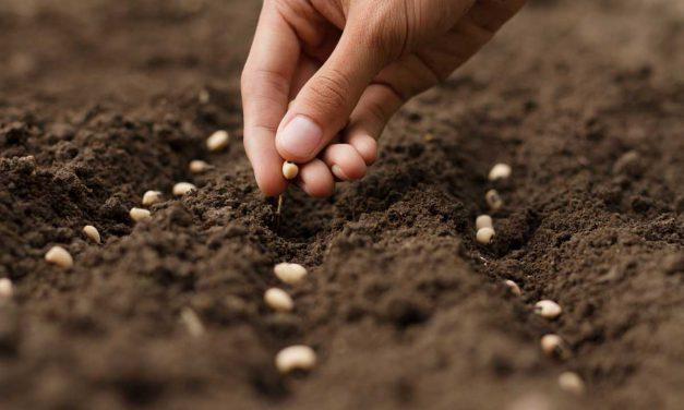 Table ronde : Manger local, quels défis socio-économiques pour l'agriculture dans les années à venir ?